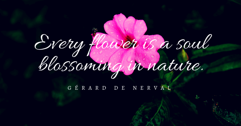 Inspiring 87 Quotes About Flowers Blooming For Your Beautiful Day