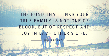 The bond that links your true family is not one of blood but of respect and joy in each others life. 375x195 - 36 Unforgettable Quotes About the Importance of Family