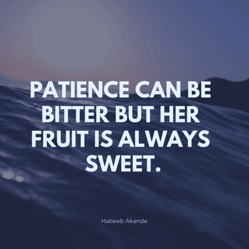 Patience can be bitter but her fruit is always sweet. - 80 Encouraging Quotes for Passionate Work Everyday