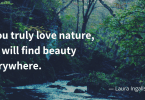 If you truly love nature you will find beauty everywhere. 145x100 - 35 Delicate Quotes about Nature and Love