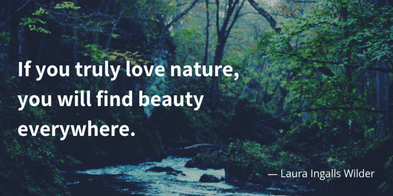 If you truly love nature you will find beauty everywhere. 810x405 - 35 Delicate Quotes about Nature and Love