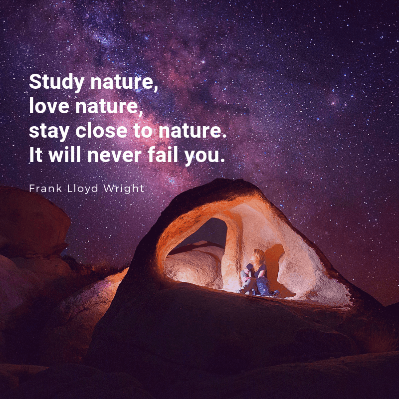Study nature love nature stay close to nature. It will never fail you. - 35 Delicate Quotes about Nature and Love