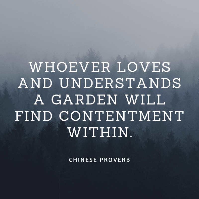 Whoever loves and understands a garden will find contentment within. - 35 Delicate Quotes about Nature and Love