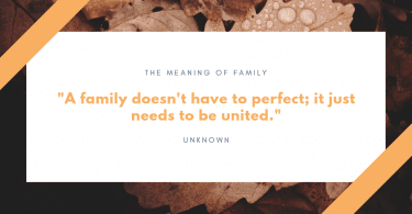 A family doesnt have to perfect it just needs to be united. 375x195 - 75 Quotes About The Meaning of Having Family (BEST REMINDERS)