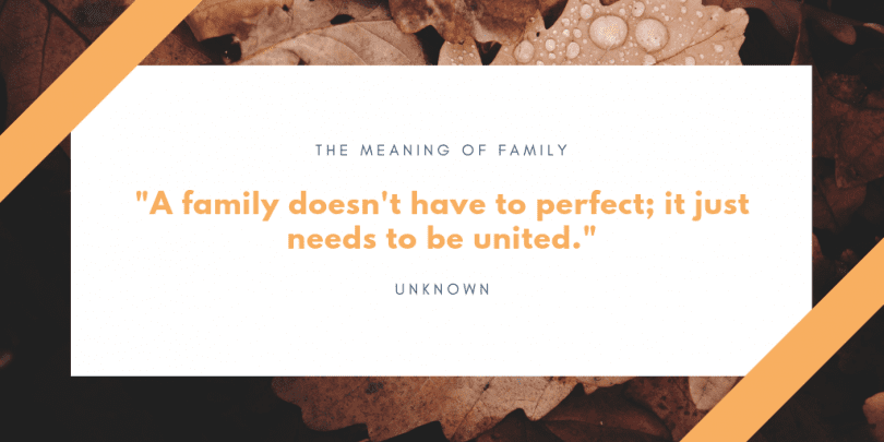 A family doesnt have to perfect it just needs to be united. 810x405 - 75 Quotes About The Meaning of Having Family (BEST REMINDERS)