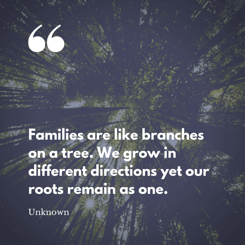 Families are like branches on a tree. We grow in different directions yet our roots remain as one. - 75 Quotes About The Meaning of Having Family (BEST REMINDERS)