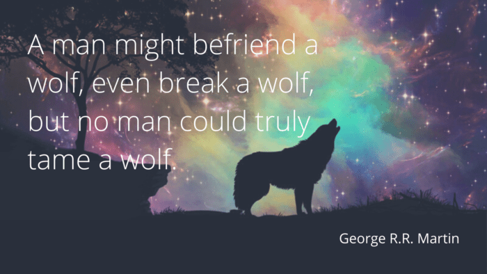 A man might befriend a wolf even break a wolf but no man could truly tame a wolf. - 21 Strong Wolf Quotes that Will Give You Inspiring, Motivational and Ideas