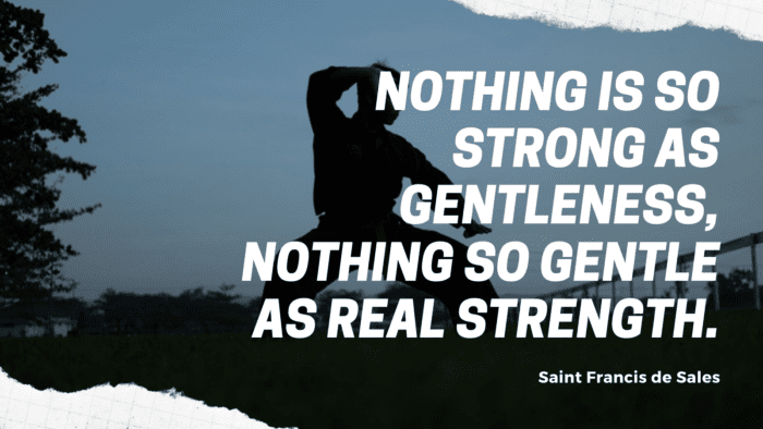 Nothing is so strong as gentleness nothing so gentle as real strength. - 50 Warrior Quotes That Awaken And Worth For Reading