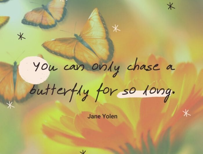 You can only chase a butterfly for so long - 24 Best Butterfly Quotes That Will Motivate You