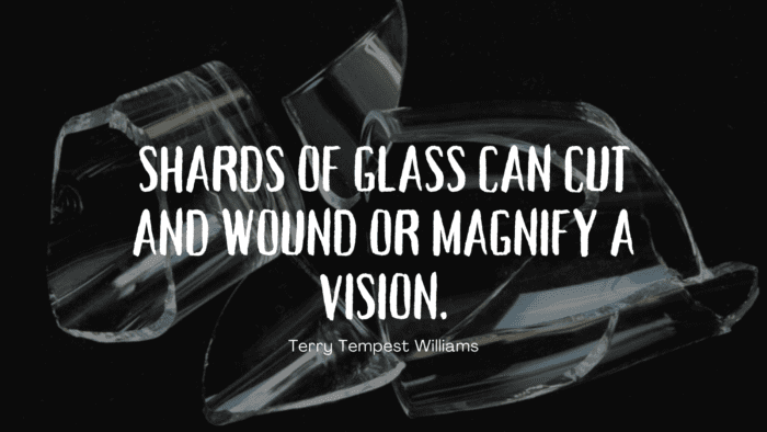 Shards of glass can cut and wound or magnify a vision. - 30 Cutting Quotes Have a Deep Meaning in Life