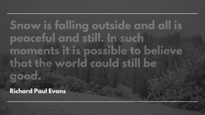 Snow is falling outside and all is peaceful and still. In such moments it is possible to believe that the world could still be good. - 20 Quotes on Snowfall that will give You Warmth
