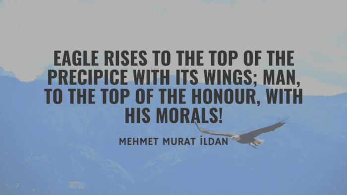 Eagle rises to the top of the precipice with its wings man to the top of the honour with his morals - 40 Eagle Quotes will Give you Life Lessons