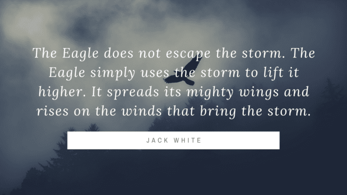 The Eagle does not escape the storm. The Eagle simply uses the storm to lift it higher. It spreads its mighty wings and rises on the winds that bring the storm. - 40 Eagle Quotes will Give you Life Lessons