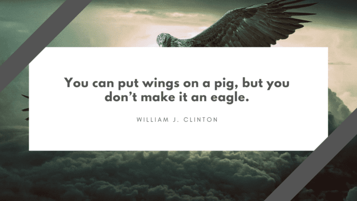 You can put wings on a pig but you dont make it an eagle. - 40 Eagle Quotes will Give you Life Lessons