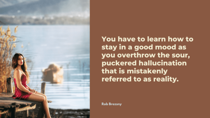 You have to learn how to stay in a good mood as you overthrow the sour puckered hallucination that is mistakenly referred to as reality. - 21 Quotes About Bad Mood and Good Mood which will give you ideas on how to deal with it